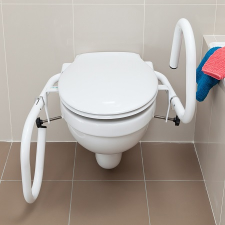 3-in-1 Toilet Rail